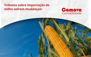 Tributos Sobre Importação De Milho Sofrem Mudanças! Comava - Escritório de Contabilidade em São Paulo - SP   Comava Contabilidade