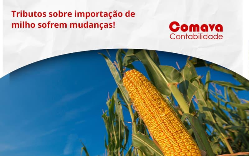Tributos Sobre Importação De Milho Sofrem Mudanças! Comava - Escritório de Contabilidade em São Paulo - SP | Comava Contabilidade